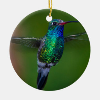 Floating Hummingbird Christmas Ornament