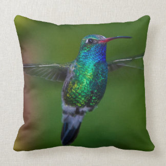 Floating Hummingbird Cushion
