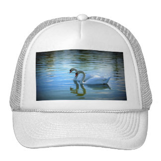 Floating on Glass Hats