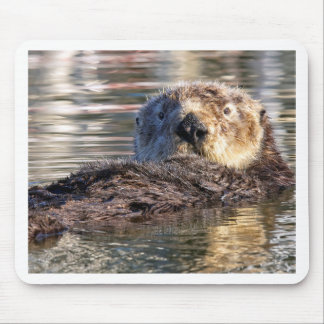 Floating Otter Mouse Pad