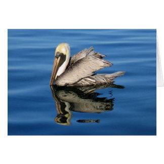 Floating Pelican Card