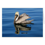 Floating Pelican Note Card
