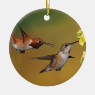 Floating Rufous Hummingbird Christmas Ornament