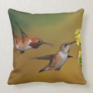 Floating Rufous Hummingbird Cushion