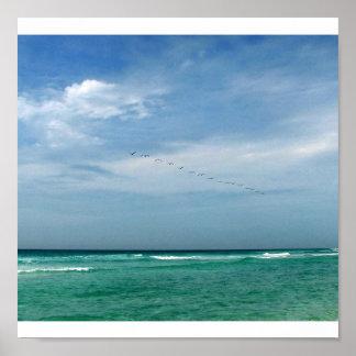 Flock in Flight - Destin, Florida Print