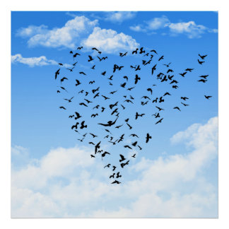 Flock of Birds Love Heart poster print