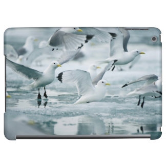 Flock of Black-legged Kittiwakes iPad Air Case