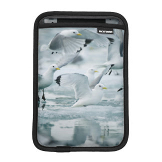 Flock of Black-legged Kittiwakes iPad Mini Sleeve