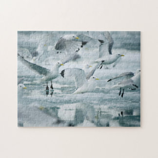 Flock of Black-legged Kittiwakes Jigsaw Puzzle