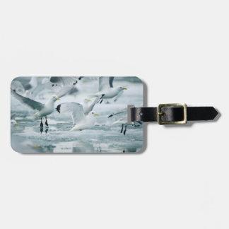 Flock of Black-legged Kittiwakes Luggage Tag