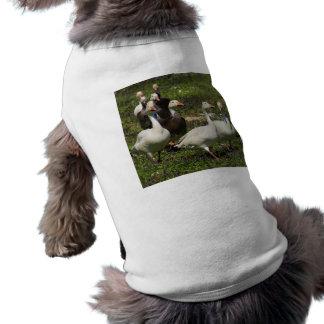 Flock of Ducks Sleeveless Dog Shirt