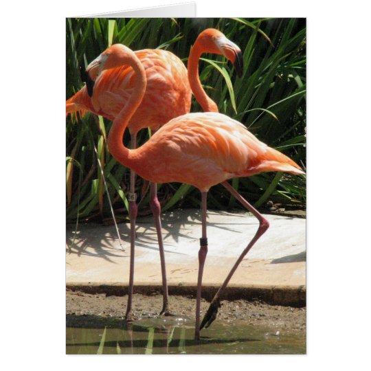 Flock of Flamingos Greeting Card