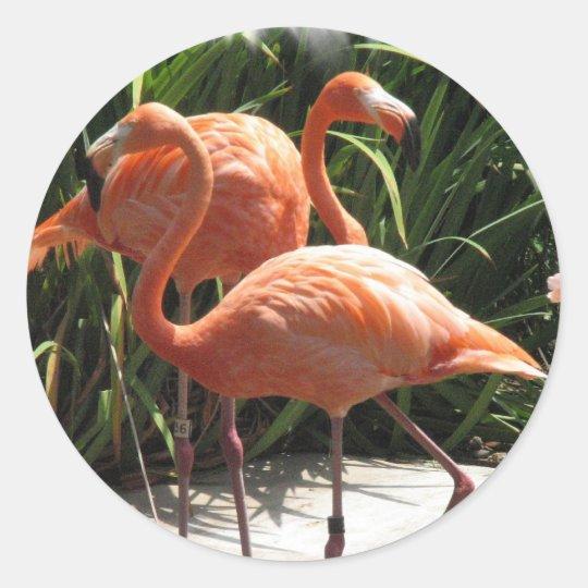 Flock of Flamingos Stickers