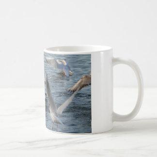flock of gulls mug