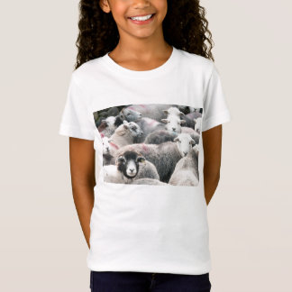 Flock Of Herdwicks T-Shirt