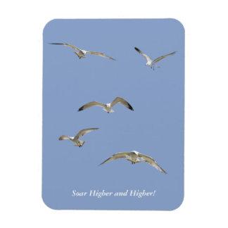 Flock of High-Flying Seagulls Rectangular Photo Magnet