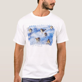 Flock of House Sparrows 'Passer domesticus' on T-Shirt