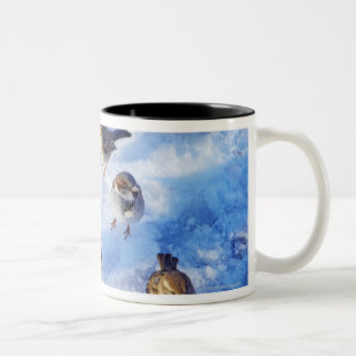 Flock of House Sparrows 'Passer domesticus' on Two-Tone Coffee Mug