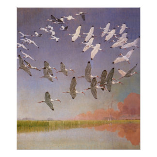 Flock of Ibis Flying Over Wetlands, Vintage Birds Poster