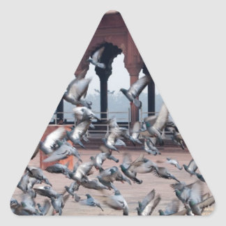 Flock of pigeons triangle stickers