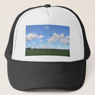 Flock Of Pigeons Trucker Hat