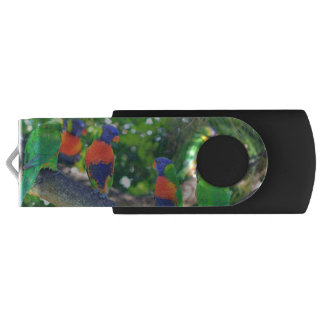 Flock of Rainbow lorikeets on a branch of a Tree Swivel USB 2.0 Flash Drive
