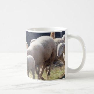 flock of sheep coffee mugs
