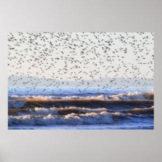 Flock of Waders Print