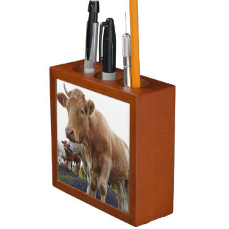 Flock of young white cows in Scottish field Desk Organiser