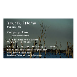 Flooded River Murray for irrigation, Australia Pack Of Standard Business Cards