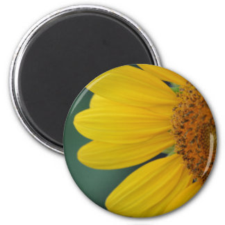 Flora dela Sol magnet