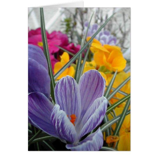 flora for spring #3 card