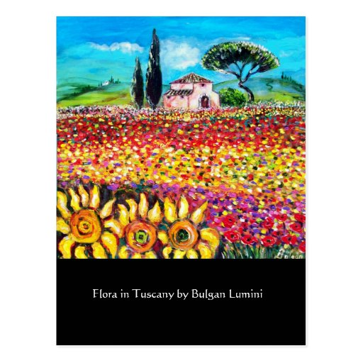 FLORA IN TUSCANY/ Fields ,Poppies and Sunflowers Post Card