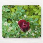 floraison de printemps tapis de souris