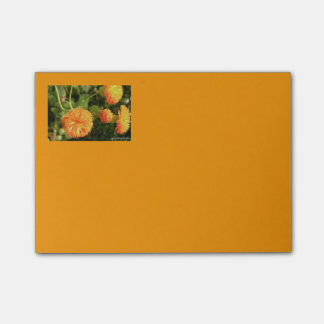 Floral 4x3 Post Its Post-it Notes