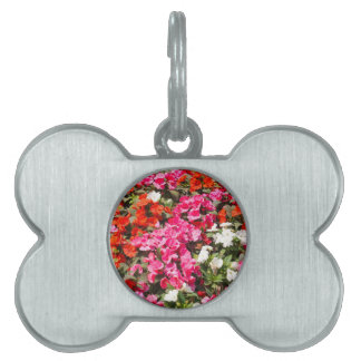 Floral background pet ID tag