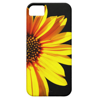 floral barely there iPhone 5 case