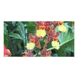 Floral blank note cards photo card