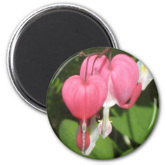 Floral Bleeding Heart Medium Round Magnet