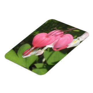 Floral Bleeding Heart Vinyl Photo Fridge Magnet