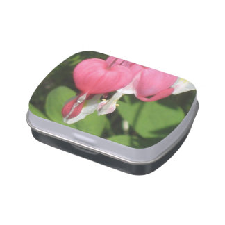 Floral Bleeding Heart White Jelly Belly Candy Tin