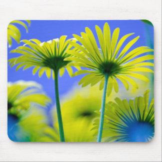 Floral Blossoms Destiny Elegant Whimsical Fresh Mousepads