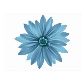 Floral Blue Daisy Flower  Daisies Postcard