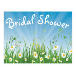 Floral Bridal Shower White Daisy Blue Invitation Postcard