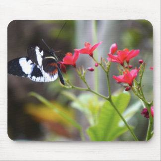 Floral Butterfly - Pink Flowers Mouse Pad