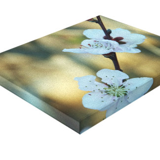 Floral Stretched Canvas Prints
