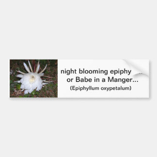floral creations car bumper sticker