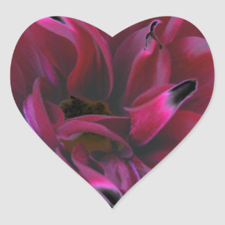 Floral dahlia in deep reds accented in black heart sticker