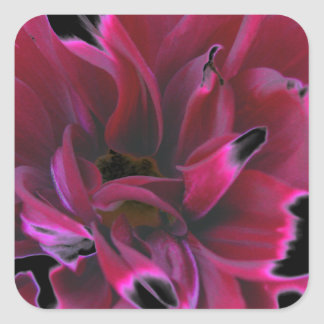Floral dahlia in deep reds accented in black square stickers