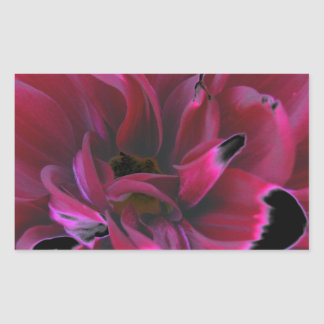 Floral dahlia in deep reds accented in black stickers